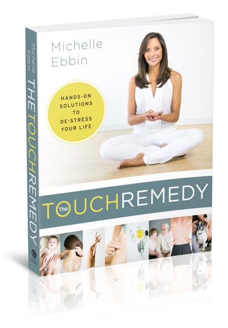 EBBIN_TOuchRemedy3D